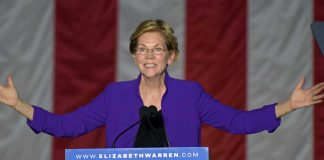 Elizabeth Warren Has Drastic Plan to Bypass the Constitution