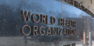 Biden Makes Fauci New Head to Lead US Delegation With World Health Organization